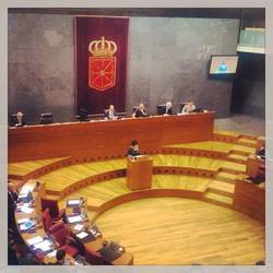 Parlamentuak Laguntza txakurrei buruzko foru lege proposamena aintzat hartzea onetsi du