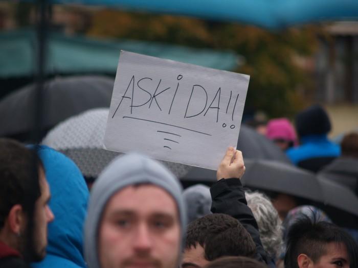 Altsasu manifestazioko argazki gehiago - 9