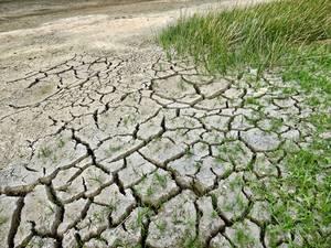 Klima-aldaketa legea
