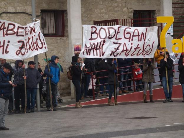 #Altsasu manifestazioak utzitako irudiak - 33