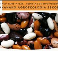 Sakanako Agroekologia Eskola. Bertako barietateak: Babarrunaren jardunaldia