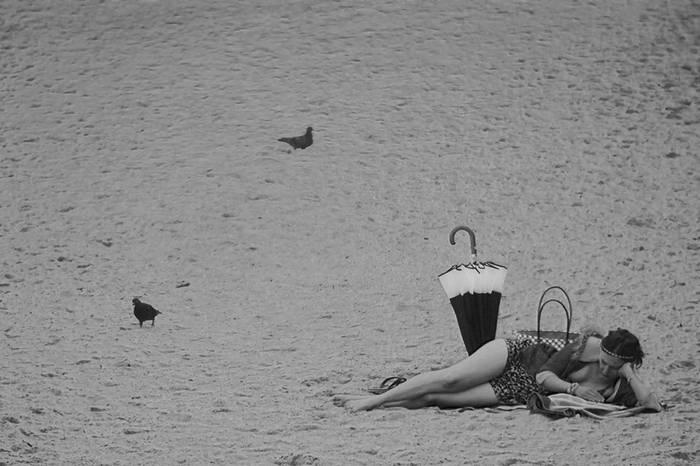 Uda Euskal Herrian. Biarritz. 2015eko uztaila.