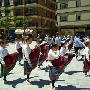 Etxarri Aranatz dantzari txikien bilgune izan zen igandean
