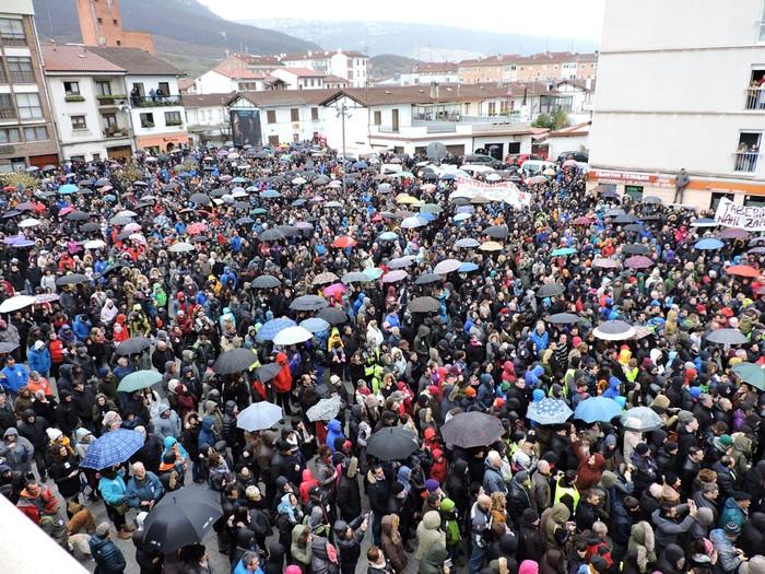 Altsasuko manifestazioa kalez kale - 29