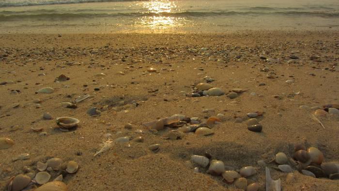 Praia Sao Jacinto