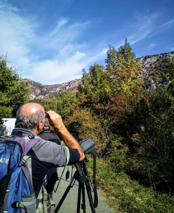 Ornitologia asteburua, Sakanako hegaztiak ezagutzeko aukera